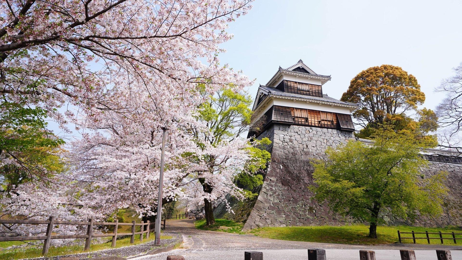熊本でおすすめのバイク買取業者5選!業者選びのポイントや評判も